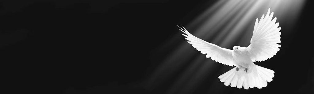 ``Los nombres y símbolos del Espíritu Santo (Primera parte)``