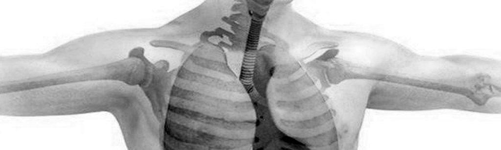 ``El cuerpo humano: imagen de la Iglesia``