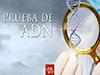 Prueba de ADN <br/><spam>Juan José Campuzano</spam>